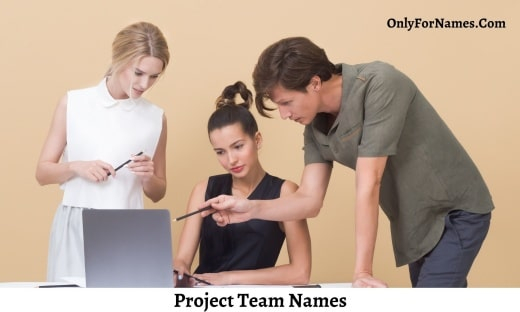Project Team Names